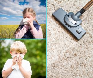 summer pollen how to clean