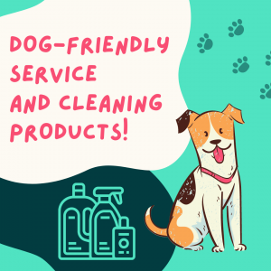 environmentally and pet friendly professional cleaning